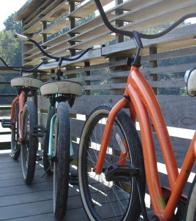 New York City, la megalopoli delle biciclette