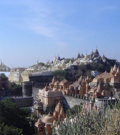 Palitana, in India la prima città vegana