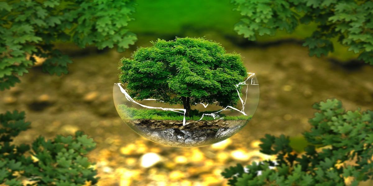 biologico bios biosfera