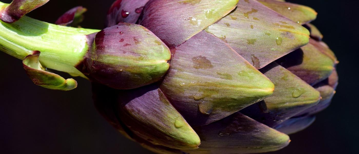 carciofi alla romana ricetta