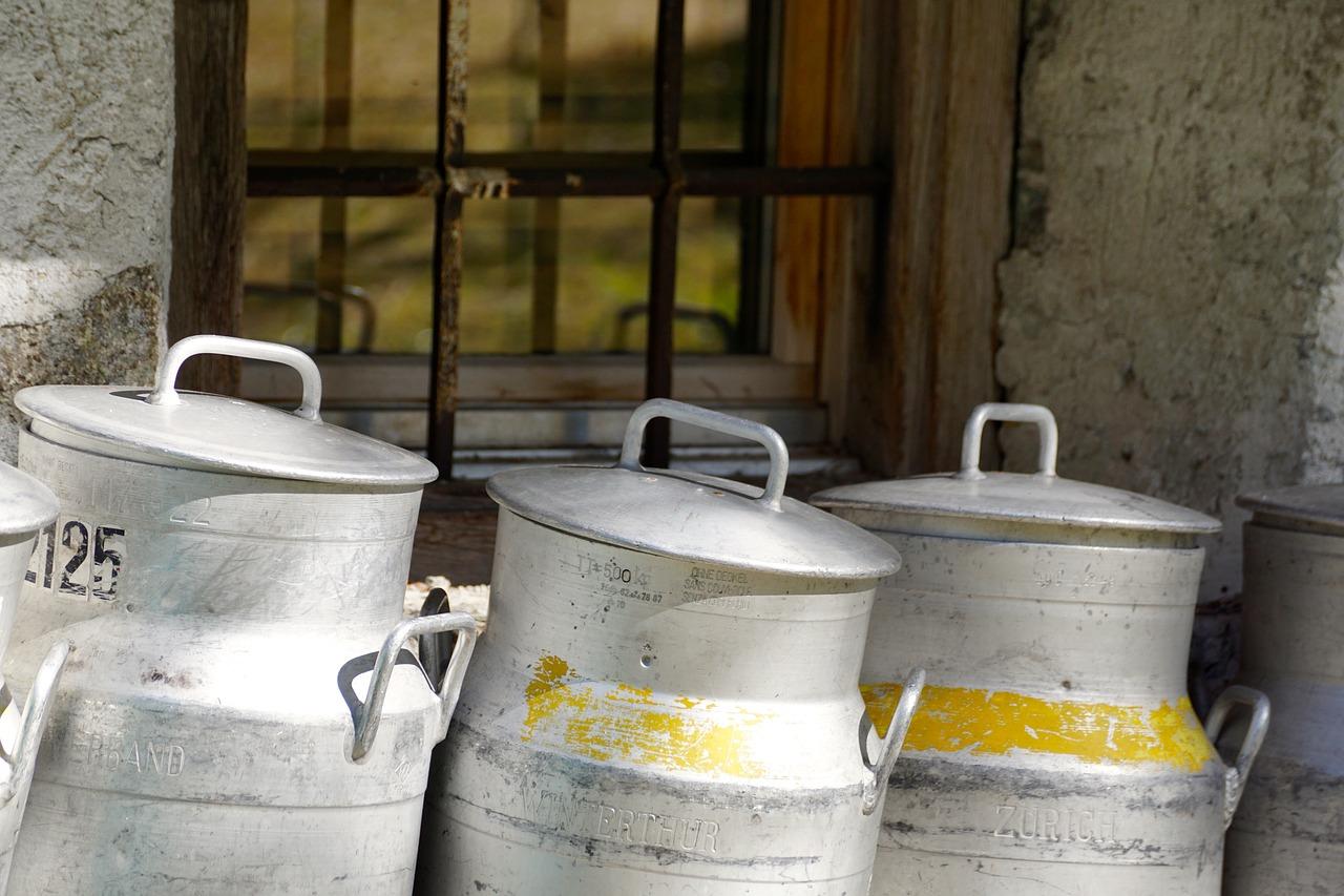 contenitore latte per formaggio svizzero tipo emmental