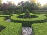 Orto Botanico del Salento, La Cutura