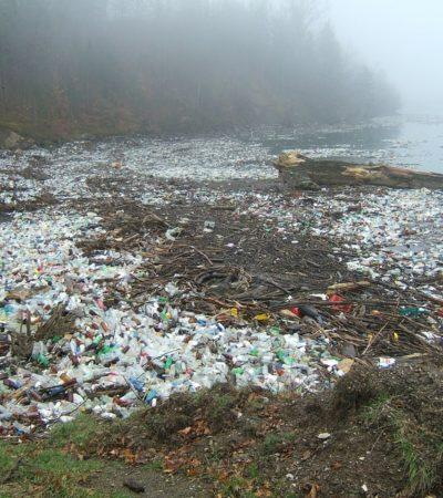 Nel Pacifico un'isola di plastica