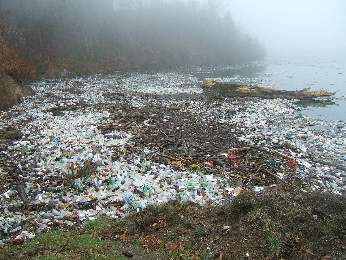 Nel pacifico un 39 isola di plastica grande quanto gli stati for Cucinare meduse