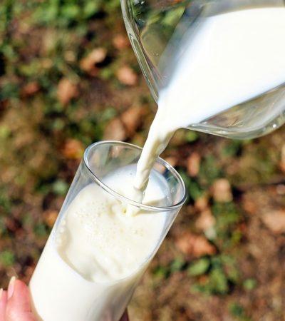 Il latte vaccino fa male. Ecco perchè