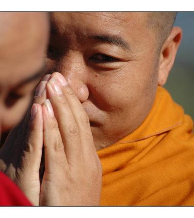 Cina, monaci tibetani piantano alberi contro il cambiamento climatico