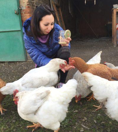 Simo la vegana: una gallina per amica