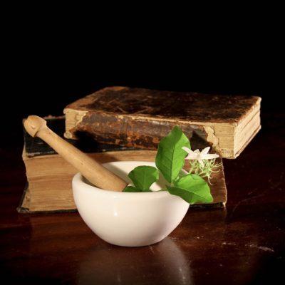 La Spagyria. Tra filosofia alchemica e natura