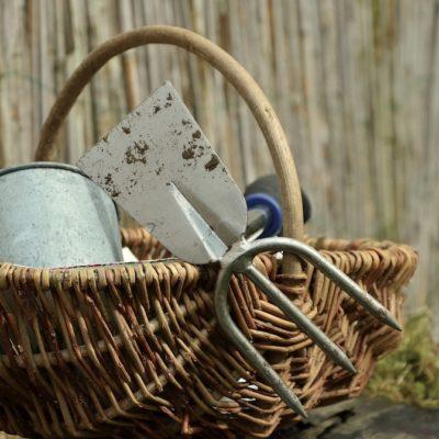 Giardino terapia, una pratica per il benessere psicofisico