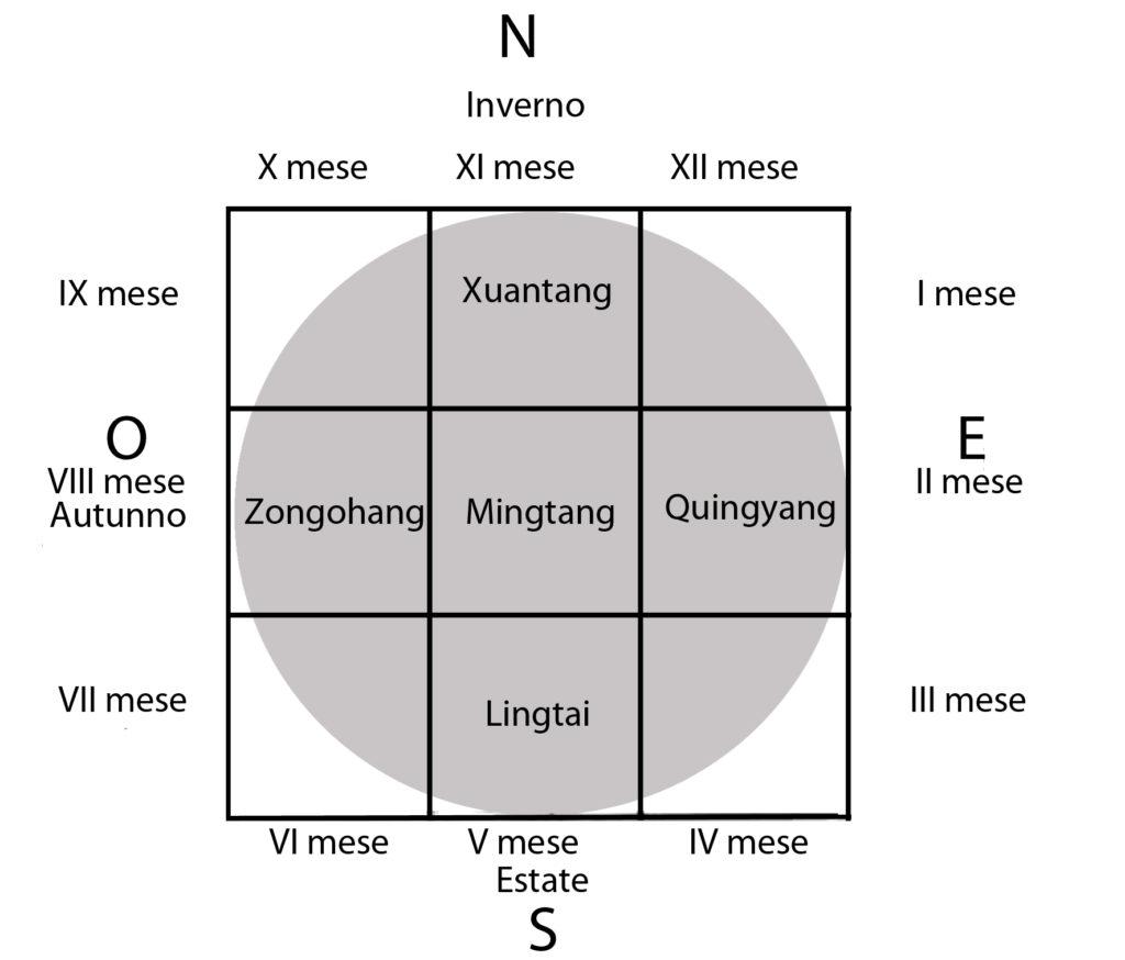 Le tartarughe in Cina: il calendario, la magia e l'origine della scrittura