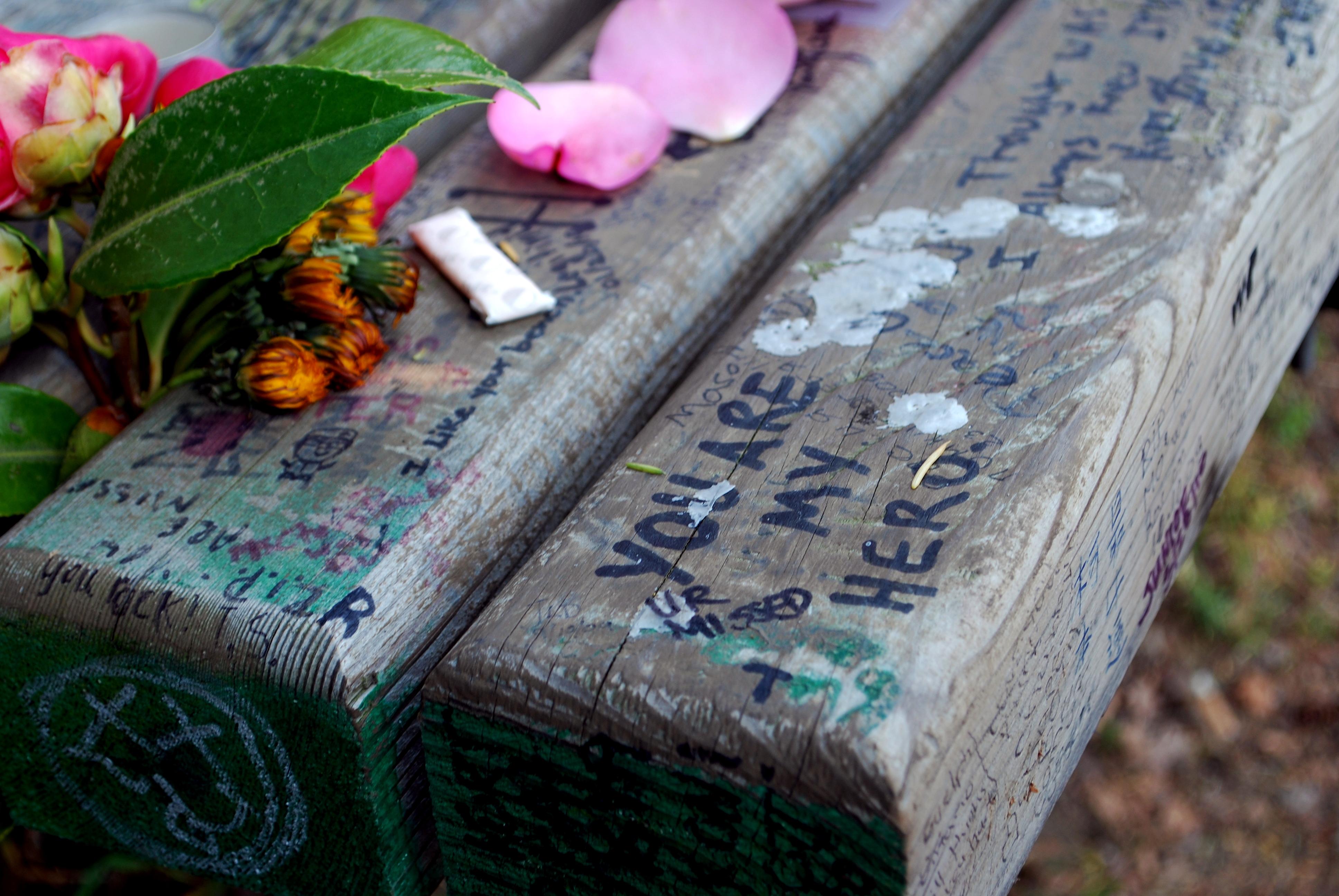 panchina ricordo vittime blue whale