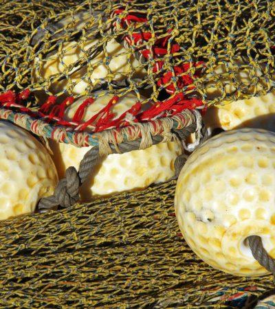 Approvate linee guida internazionali sui sistemi di documentazione del pescato