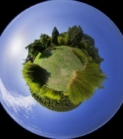 Circular economy: il lato verde dell'economia