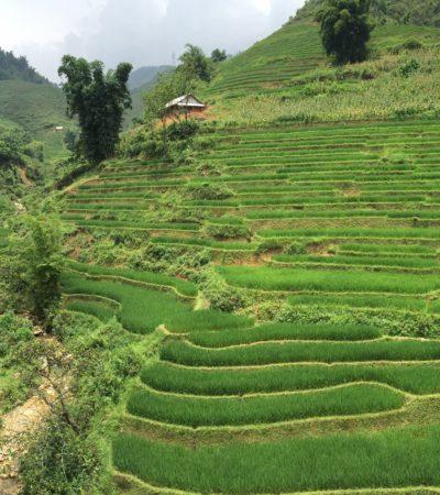 Come pianificare una vacanza in Vietnam