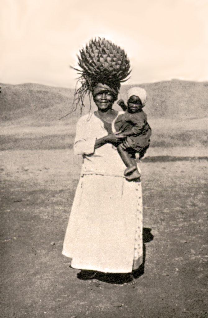 cappelli di Aloe Lesoto
