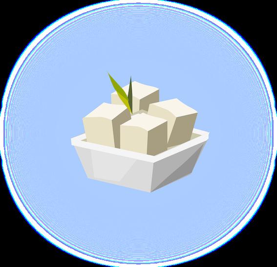 illustrazione tofu