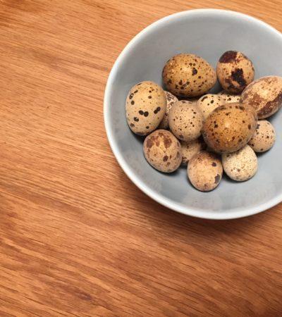 Uova di quaglia: un'altra panacea dei nostri giorni