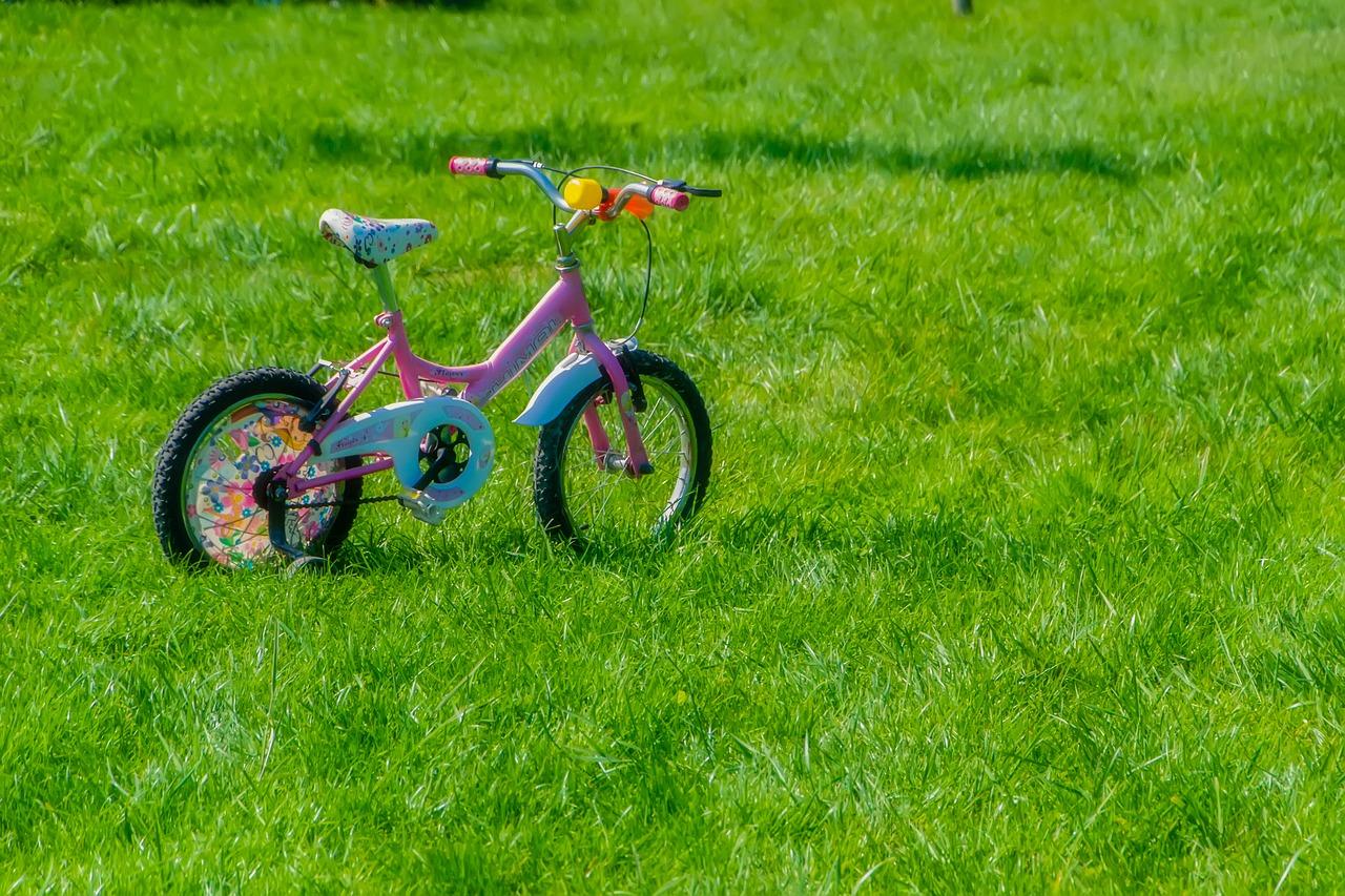 zoobombing bicicletta