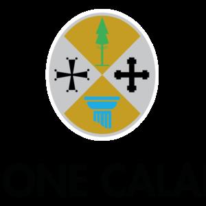CALABRIA: BOLLETTINO UFFICIALE N. 100 DEL 20 OTTOBRE 2017 -PARTE TERZA BANDI E AVVISI-
