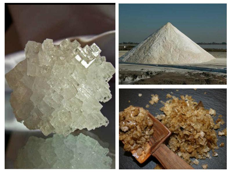 Quanti tipi di sale esistono al mondo? - Greenious
