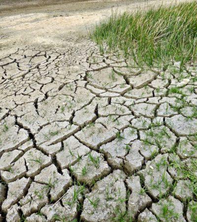Adattamento e mitigazione ai cambiamenti climatici