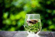 tè verde infuso