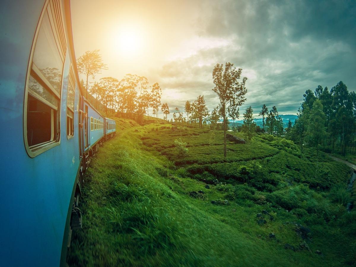 treno piantagioni di tè verde