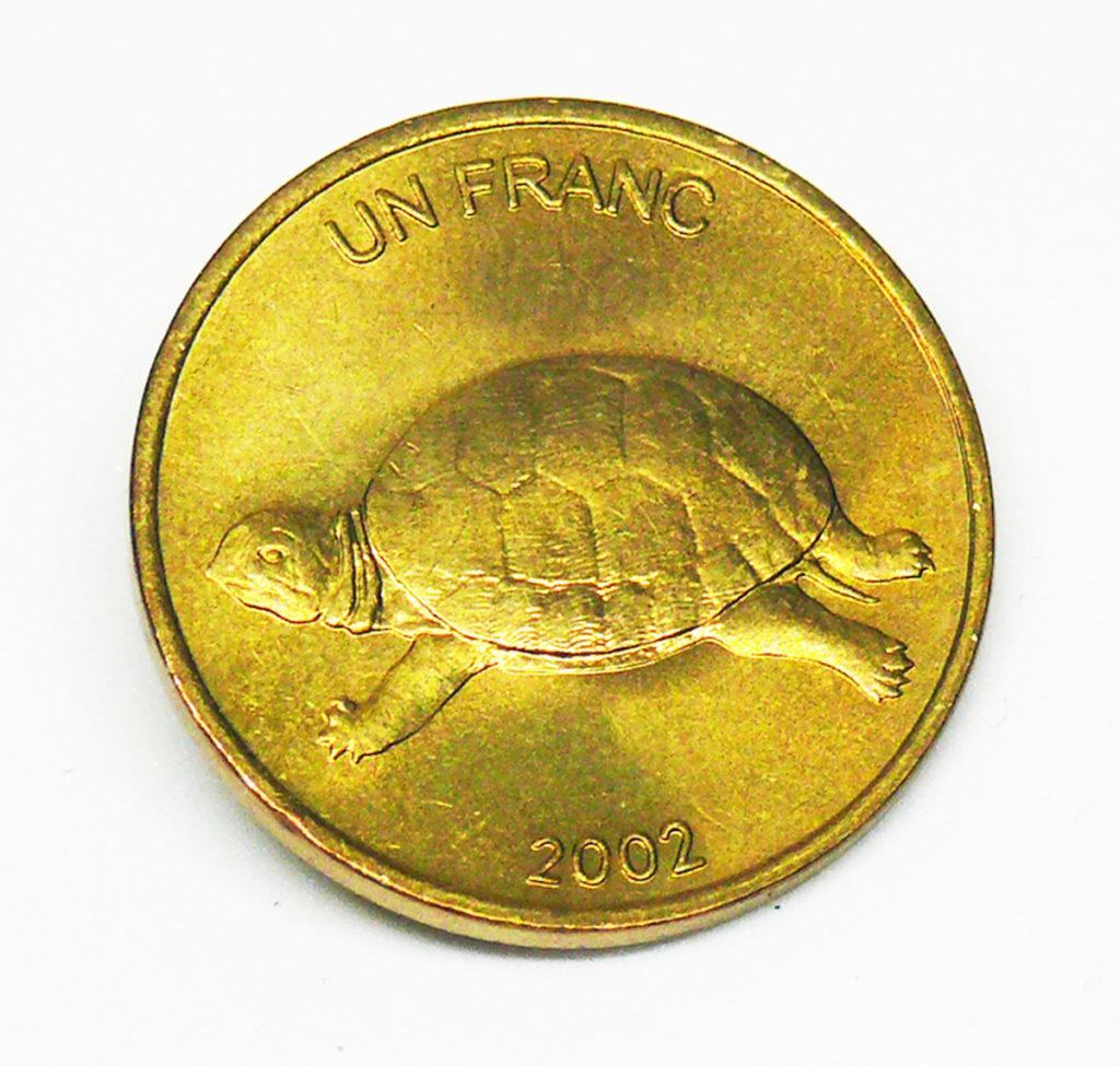 franco del congo con tartaruga