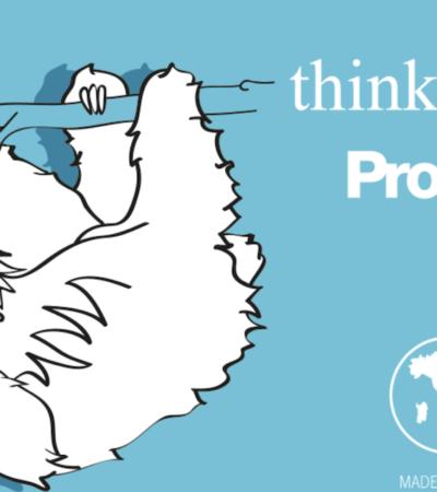 Quanta acqua consumi? Sei un gerbillo o una scimmia nasica?