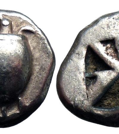 Le tartarughe sulle monete, tutto ebbe inizio sull'isola di Egina