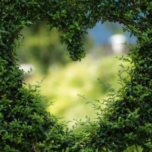 Dipendenza affettiva: l'amore che fa male