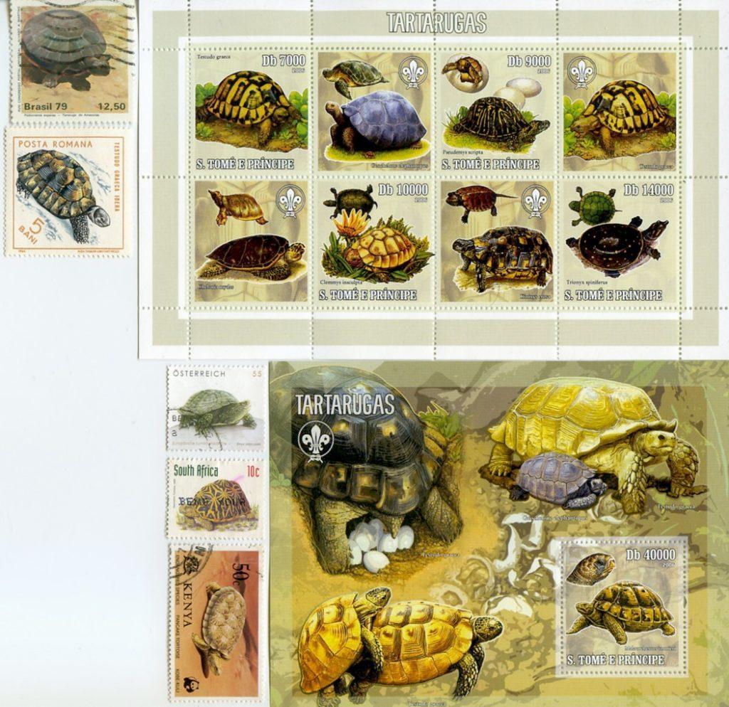 francobolli e tartarughe
