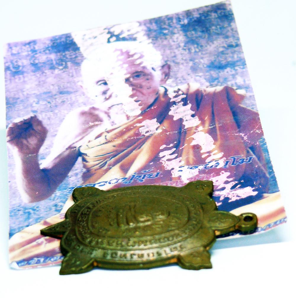 Sutra e tartarughe