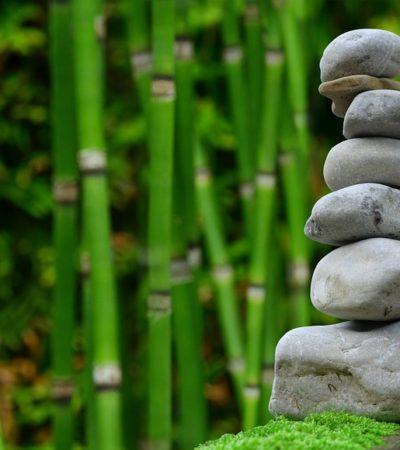 Mindfulness, la pratica del benessere e della felicità