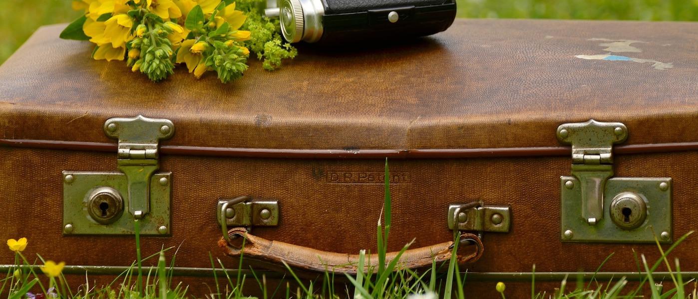 come pulire il cuoio valigia
