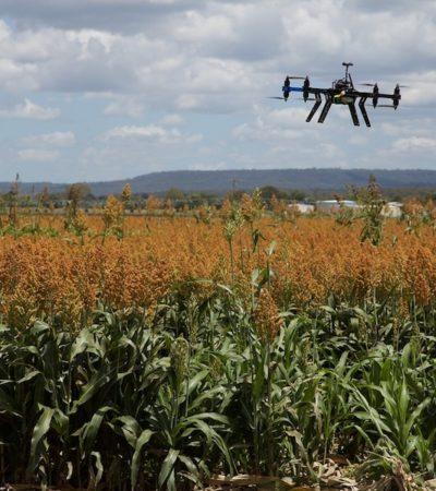 Agricoltura sostenibile: una strada necessaria