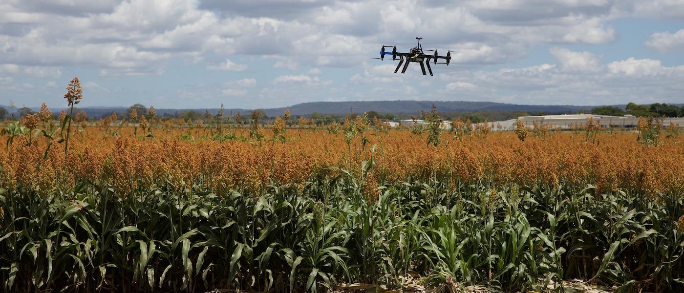 agricoltura sostenibile con drone
