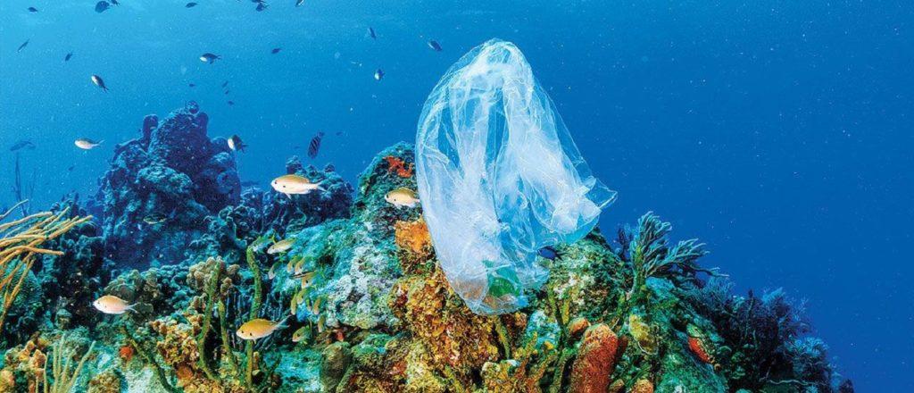 vivere senza plastica. Oceani di plastica