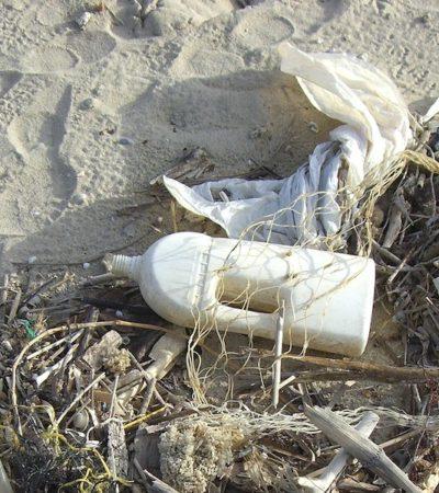 Rifiuti di plastica: una strategia europea per l'intero pianeta