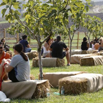 Al Rural Festival di Parma biodiversità agricola e stand gastronomici