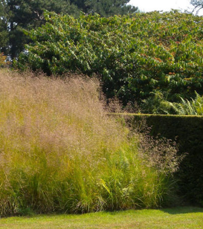 Il progetto del giardino, tra memoria e sguardo al futuro