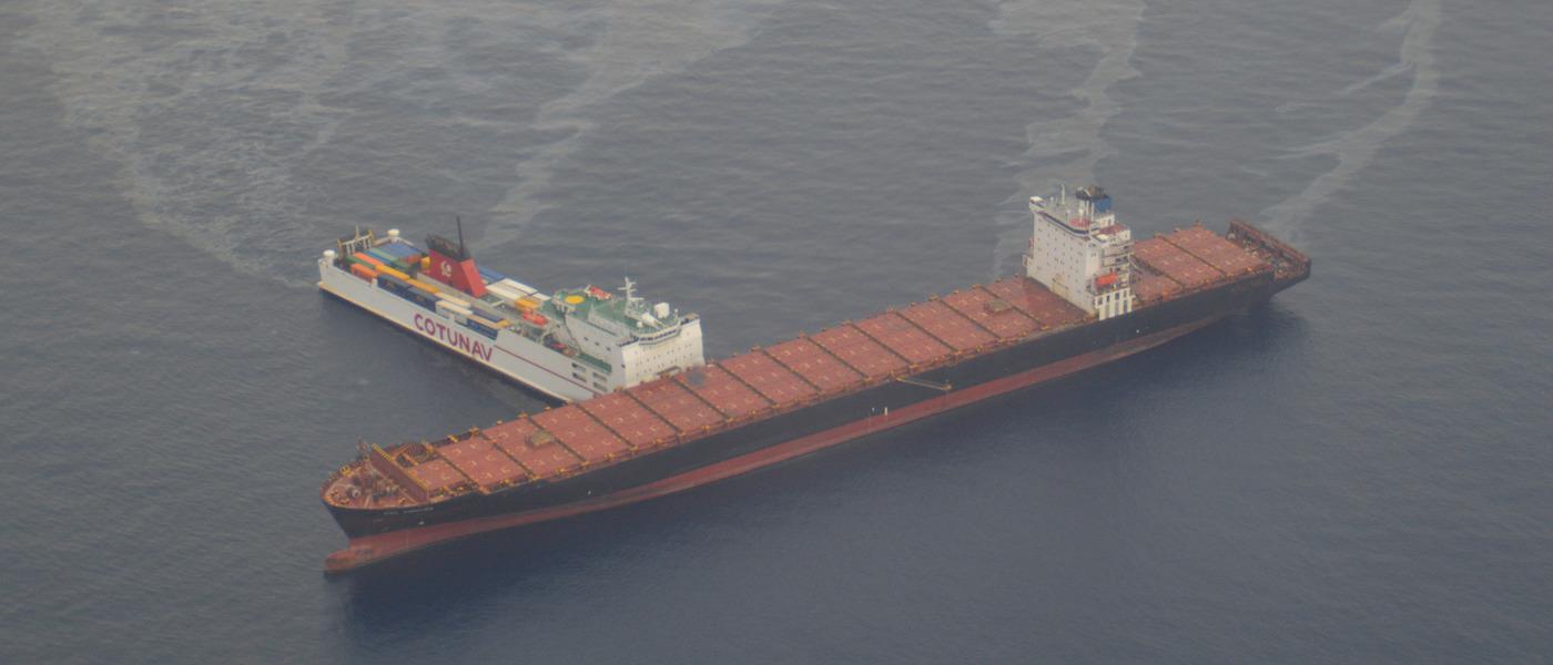 collisione navi nel paradiso dei cetacei