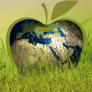 Ecologia, economia, ideologia e buon senso