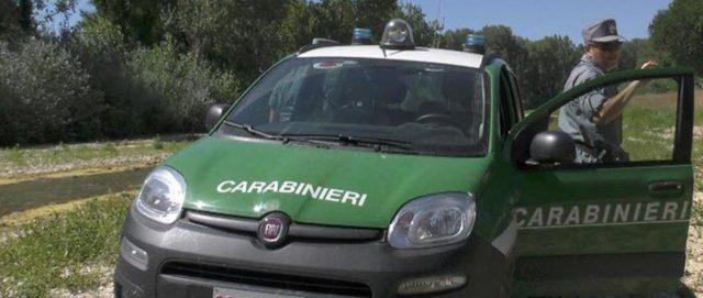 auto carabinieri forestali