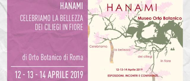 hanami, fioritura dei ciliegi