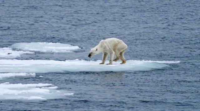 permafrost che si scioglie