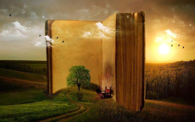 libro nel paesaggio