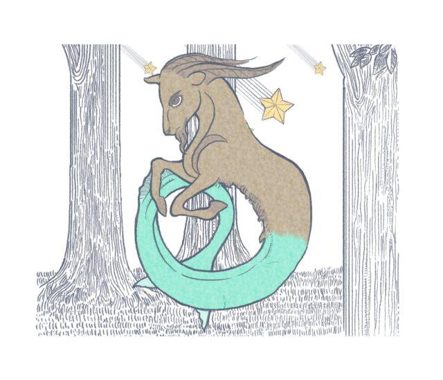 capricorno, segno zodiacale