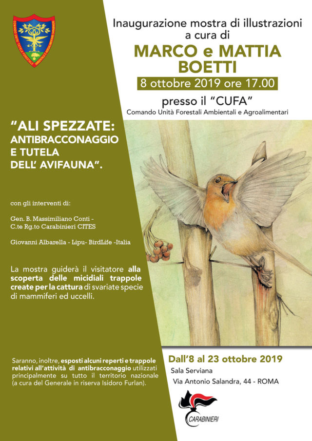 Ali spezzate: antibracconaggio e tutela dell'avifauna